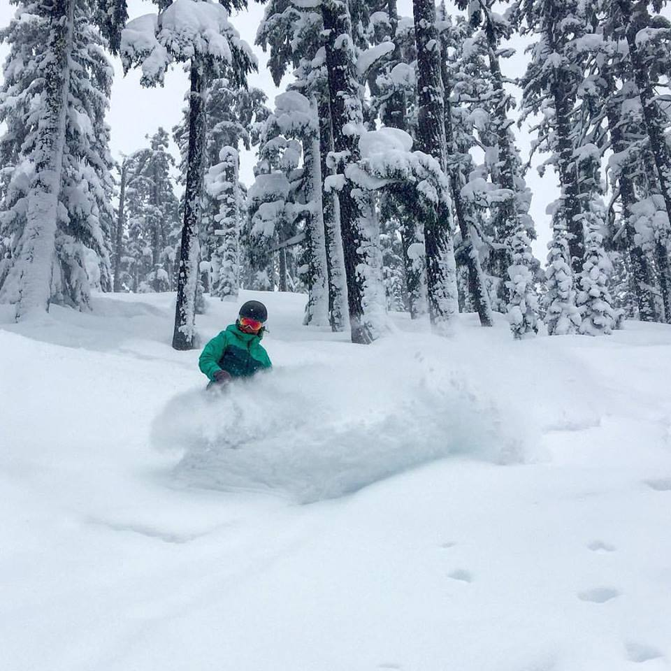 Mt Bachelor after 22 cm in 24 hours, 27 February 2017