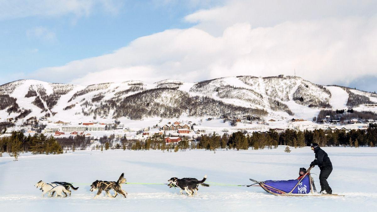Dog Sledding in Geilo © Emile Holba