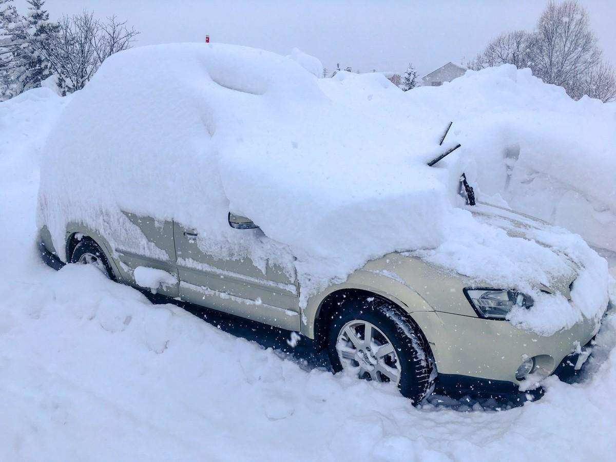 Hanazono Powder Day - Kenji's Car at 7 am