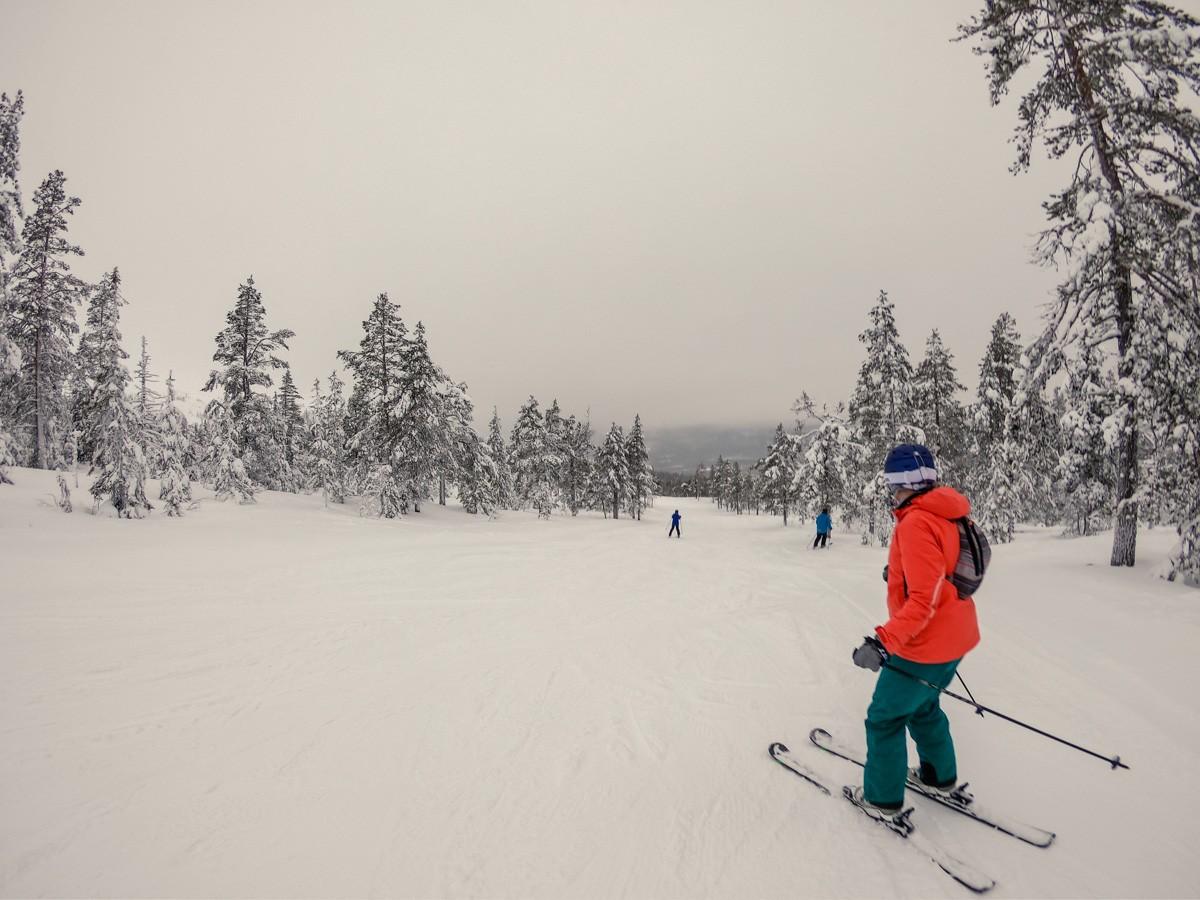 Soft snow and easy tree skiing in Stöten