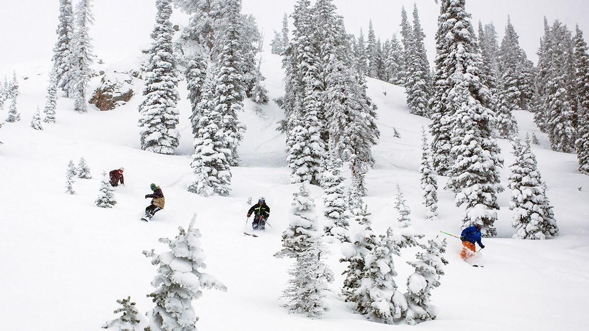 Powder Mountain Pow Day © Ian Matteson