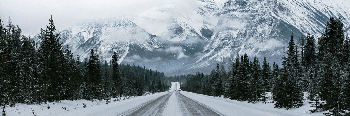 Icefields Parkway © David Guenther