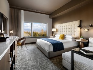 Premium 1-Bedroom Suite