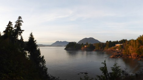 10 Things to Do in Tofino