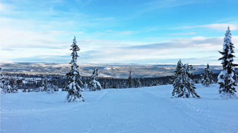 Trysil gentle slopes